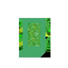 Installation de votre mur végétal