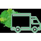 Transport de votre mur végétal